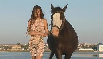 Lovely babe is riding horse